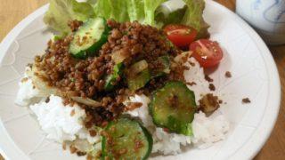 カレーひき肉の夏ご飯