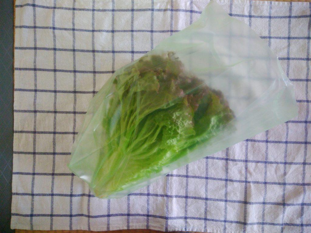 野菜保存袋 愛菜果