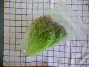 野菜保存袋 愛菜果 Mサイズ